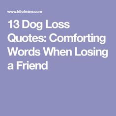 Pet Loss Quotes 13 Dog Loss Quotes Comforting Words When Losing A Friend  Dog Loss .