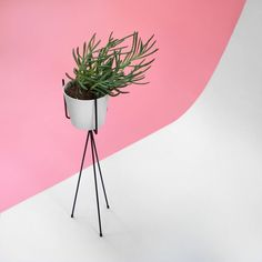 A Nice Display Of Our Plant Stand By @littledrill Via Instagram Ferm LIVING  Plant Stand