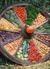 Im Oktober wird das Erntedankfest gefeiert. Mit diesem Fest möchte man sich für die gute Ernte bei Gott bedanken.