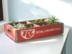 vintage soda crates for centerpieces