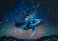 ::The Beetle Shack:: Ciel Art, Sea Turtle Pictures, Space Whale, Jellyfish Art, Whale Art, Pretty Drawings, Cute Animal Drawings, Sky Art, Water Photography