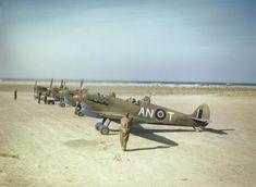 RCAF in Tunisia, May 1943.