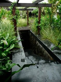 The entry to Studio Mumbai's Secret Pool... what a divine surprise it must be.