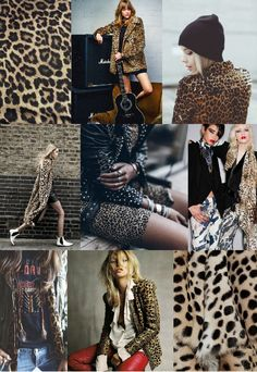 Rock-n-Roll-Animal Cover ~   PRINT + PATTERN INSPIRATION: