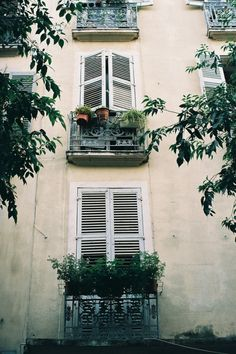 shutters and windows and leaves and perfect