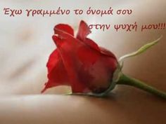 dashkool - 0 results for holiday Good Night Love Images, Greek Desserts, Greek Music, Beautiful Rose Flowers, Love Text, Greek Quotes, Love You So Much, Holiday Parties, Life Lessons