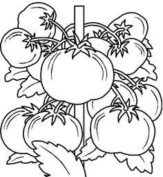 Vegetables Coloring Page Part 2