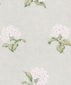 Heligan Eau De Nil (3429699) - Laura Ashley Wallpapers - A delicate design featuring beautiful motifs of white hydrangea blossoms on a stunning eau de nil blue background. Quaint and dainty for rustic elegance! Please request a sample for true colour match.