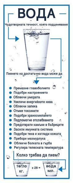 Портал за здраве, детокс и всичко за суперхраните.За ползите от пиенето на обикновена вода.