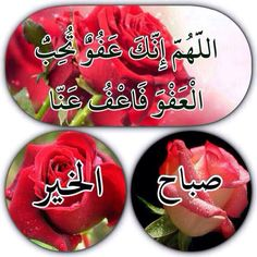 Good Morning Arabic, Good Morning Gif, Morning Wish, Beautiful Morning Messages, Good Morning Images Flowers, Happy Birthday Bouquet, Images Noêl Vintages, Love Heart Images, Wallpaper Iphone Neon