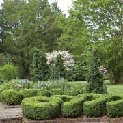 Natural Order | Garden and Gun