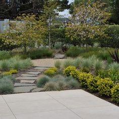 jardin contemporain à base de graminées ornementales