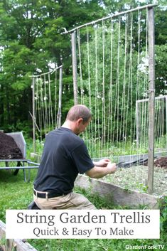A trellis does not need to be complicated. If you want to have climbing flowers like Clematis or Thunbergia flowers in your garden, a simple string trellis works. I build these out of limbs and sticks I find in the woods or pine. A staple gun and twine Bean Trellis, Diy Trellis, Garden Trellis, Trellis Ideas, Pole Beans Trellis, Wood Trellis, String Garden, Garden Poles, Bean Garden