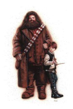 Harry Potter / Star Wars mashup por James Hance.