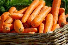 cultivar en botes de pintura - zanahorias