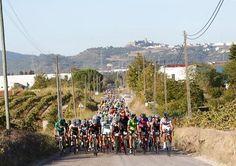 Palmela reuniu mais de 500 ciclistas nacionais e estrangeiros
