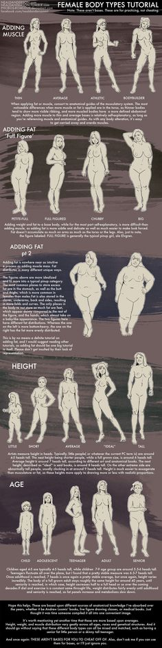 Female Body Types Tutorial by Phobos-Romulus #Drawingtips