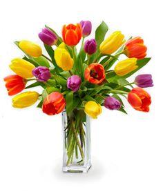 Twenty Tulip Bouquet - $29.99