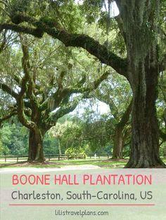 Boone Hall Plantation, Charleston, South-Carolina, USA