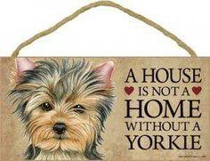 Yorkies #happytails