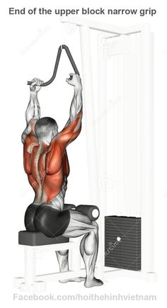 End Of The Upper Block Narrow Grip Stock Illustration - Image: 44124246 Fitness Workouts, Gym Workout Tips, At Home Workouts, Fitness Tips, Fitness Motivation, Health Fitness, Muscle Fitness, Mens Fitness, Cable Workout