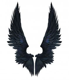 illustration demon wings, black wing plumage isolated on white background Premium Photo Angel Wings Drawing, Angel Wings Art, White Angel Wings, Bird Wings, Kopf Tattoo, Marshmello Wallpapers, Demon Wings, Wings Wallpaper, Angel Artwork