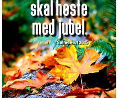 De som sår med tårer, skal høste med jubel. Movie Posters, Bible Verses, Pictures, Film Poster, Billboard, Film Posters