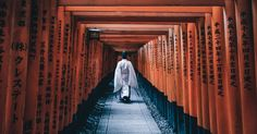 These stunning photographs ofJapan prove that beauty ishidden ineven the smallest things