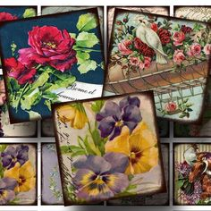 Flowers and Birds Digital Collage Sheet  by CharmedMemoryCollage