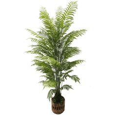 Artificial Shorea Robusta Plants with 24 Leaves Small Palm Trees, Small Palms, Cactus Plants, Leaves, Cacti, Cactus