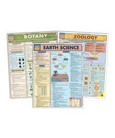 Another great find on #zulily! Earth Science Quick Study Laminated Reference Sheet Set by BarCharts #zulilyfinds