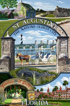 St. Augustine Florida Montage Scenes Art by NightingaleArtwork