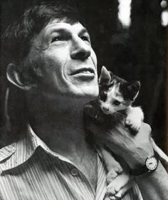 Spock with cat