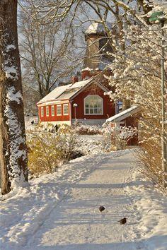 Pretty Country Snow Picture