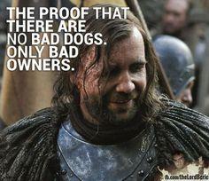"Sandor ""The Hound"" Clegane // Game Of Thrones // Truth"