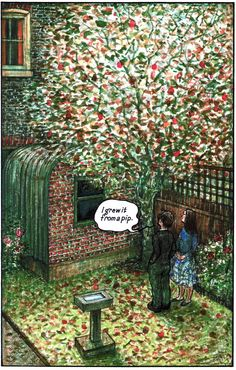 "Raymond Briggs - Ethel & Ernest A True Story (about his father and mother) - ""I grew it from a pip"" (p. 103 - compare with no. 12) (18 of 19)"