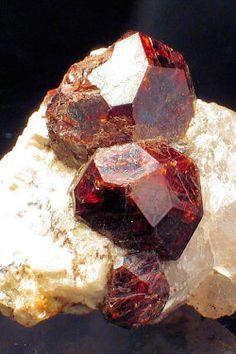 Granate tu piedra en enero