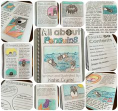 My ANIMAL RESEARCH PROJECT! Students create their own nonfiction books in this informational writing unit.