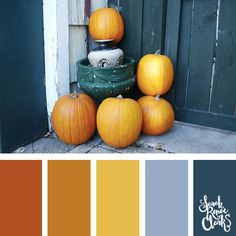 Pumpkins color scheme   Click for more fall color combinations, mood boards and seasonal color palettes at http://sarahrenaeclark.com