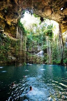 Xcaret, Mexico This is Paradise