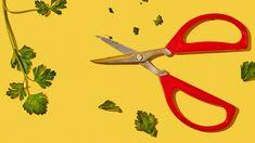 These Little Joyce Chen Scissors Can Replace Every Other Pair You Own - Bon Appétit Restaurant Jobs, Restaurant Kitchen, How To Devein Shrimp, Eye Dropper, Knife And Fork, Flower Petals, Raisin, Scissors, Herbs