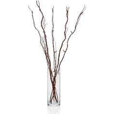 """Holiday Lane Led 40"""" Natural Brown Willow Tree Branches found on Polyvore featuring home, home decor, brown home decor and branches home decor"""