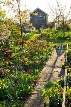 This Cotswold cottage is home to the spring garden of our dreams – and here's how to replicate it