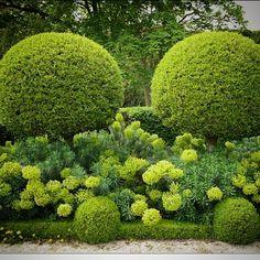 Jardin l'Orangerie in Paris