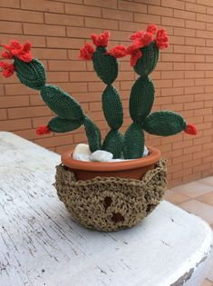 Piantina grassa fatta all'uncinetto con vaso in coccio e coprivaso lavorato all'uncinetto Crochet Flower Patterns, Crochet Patterns Amigurumi, Crochet Flowers, Crochet Ball, Love Crochet, Cactus Decor, Cactus Plants, Cactus E Suculentas, Crochet Cactus