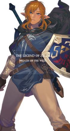 The Legend Of Zelda, Legend Of Zelda Breath, Botw Zelda, Link Art, Twilight Princess, Princess Zelda, Link Zelda, Fandom, Body Poses