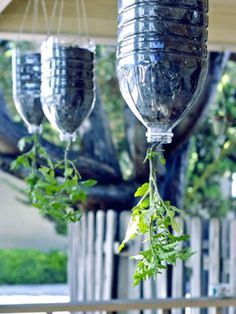 9 DIY Plastic Bottle Garden Projects - NatureBring Plastic Bottle Garden Projects Today plastic bottle is becoming an important part of garden DIY projects. Its very big reason is the use of plastic bottles in different sizes and much more.