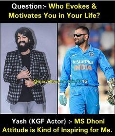 Ms Dhoni Profile, Dhoni Captaincy, Roman Reigns Wrestling, Dhoni Quotes, Ms Dhoni Wallpapers, Cricket Videos, Ms Dhoni Photos, India Cricket Team, Chennai Super Kings
