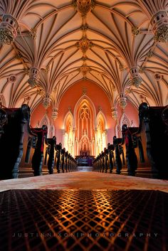 beautiful Gothic vaulted ceiling