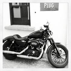 Harley #badass